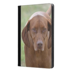 iPad Air Folio Case by Ivoke with Vizsla Phone Cases design