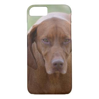 Lovable Vizsla iPhone 8/7 Case