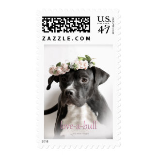 Love-a-bull Pit Bull Postage