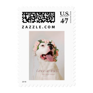 love-a-bull shelter pit bull postage