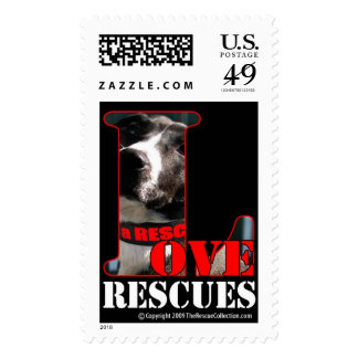 Love a Rescued Animal Postage Stamps