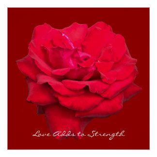Love Adds to Strength Red Rose Art Print