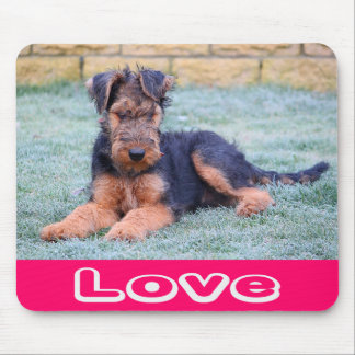 Love Airedale Terrier Puppy Dog Computer Mousepad