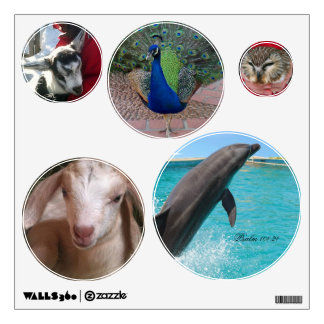Love all Creatures 5 Wall Decals
