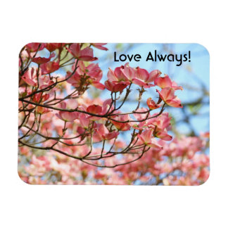 Love Always! magnets Pink Dogwood Flowers Blue Sky