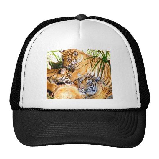 Love Always,Tigers_ Trucker Hat