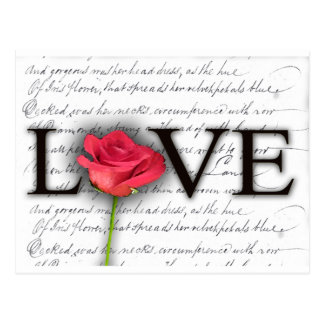 Love and a rose postcard