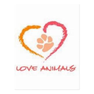Love Animals Postcard