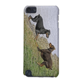 Love at First Sight Dobermans iPod Touch 5G Cover