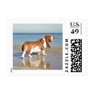 Love Basset Hound Puppy Dog Postage Stamp