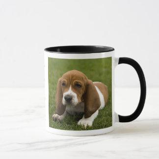 Love Basset Hound Puppy Ringer Coffee Mug