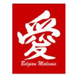 love Belgian Malinois Post Card