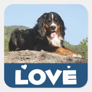 Love Bernese Puppy Dog Sticker / Seal
