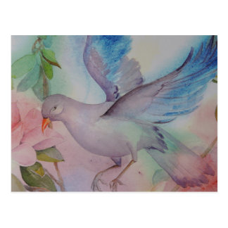 Love Bird in Blue and Pink Postcard