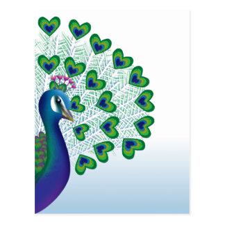 Love bird postcard