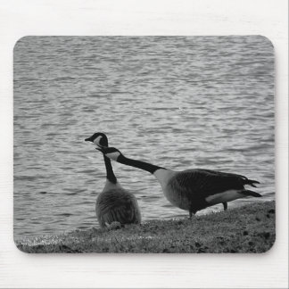 Love Birds B&W Mouse Pad