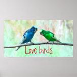 Love birds, colorful Parakeets, elegant Print