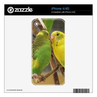 Love Birds iPhone 4S Decals