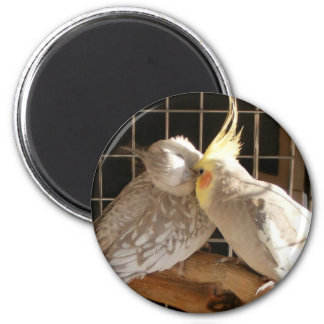Love Birds Magnet