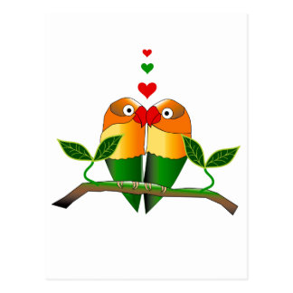 Love Birds on Postcard