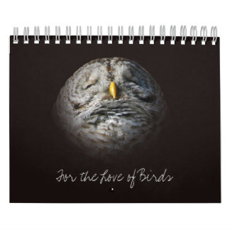 Love Birds Original Wild Bird Photography Ontario Calendar
