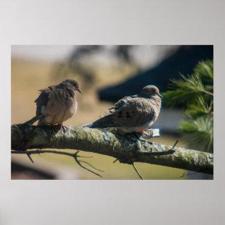 Love birds painting print