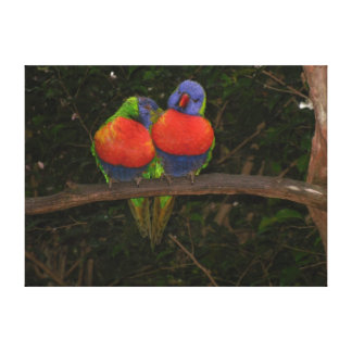 Love Bird's photo by Lorette Starr Wrapped Canvas