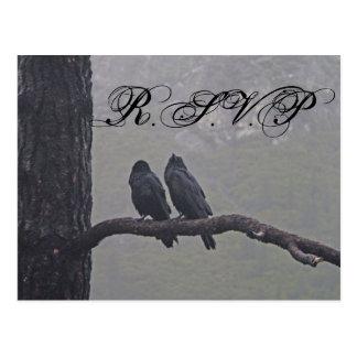 Love Birds RSVP Postcard