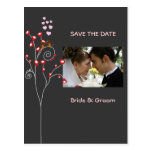 love birds/Save the Date Photo/DIY color!! Post Card