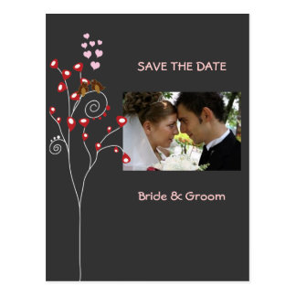 love birds/Save the Date Photo/DIY color!! Postcard