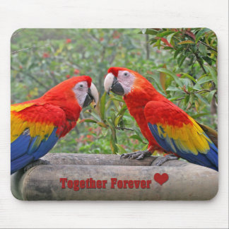 Love Birds Scarlet Mackaws Happy Couple Mouse Pad