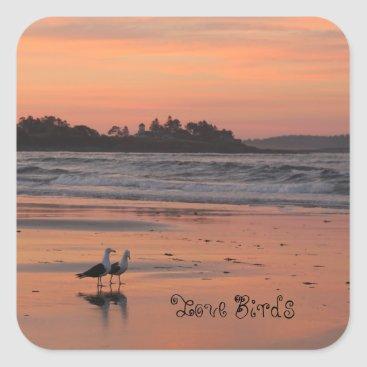 Beach Themed Love Birds Walk the Beach Square Sticker