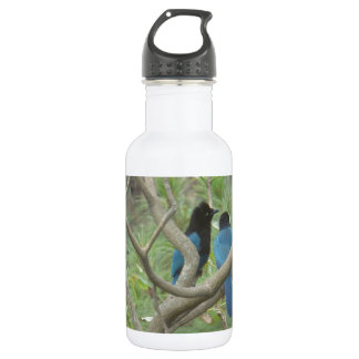 Love BIrdy Style, Tropical Black-Blue Jay Stainless Steel Water Bottle