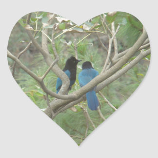 Love BIrdy Style, Tropical Black-Blue Jay Stickers
