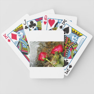Love Bites Bicycle Playing Cards