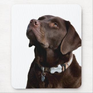 Love Black & Brown  Labrador Retriever  Mouse Pad