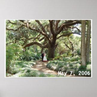 Love born under the spreading oak poster