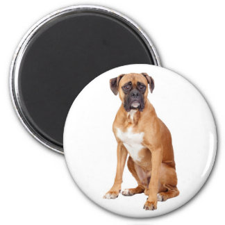 Love Boxer Puppy Dog Fridge Magnet