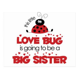 Love Bug Big Sister T-shirt Postcard