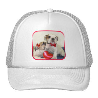 Love Bulldogs hat
