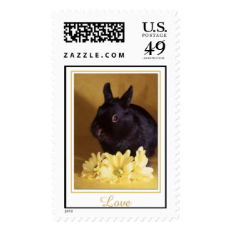Love - Bunny and Daisies Postage Stamp