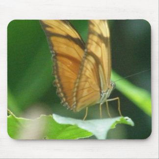 Love Butterflies Mouse Pad