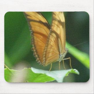 Love Butterflies Mouse Pad