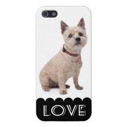 Case Savvy iPhone 5 Matte Finish Case with Cairn Terrier Phone Cases design