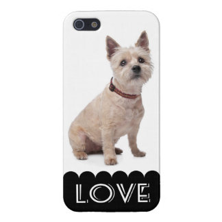 Love Cairn Terrier Puppy Dog iPhone 5 Cover Case