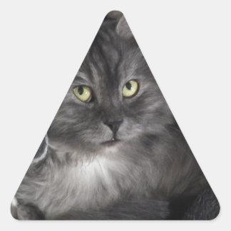 love cats triangle sticker