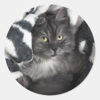 love cats classic round sticker