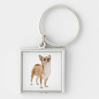 Love Chihuahua Puppy Dog Key Chain Silver-Colored Square Keychain