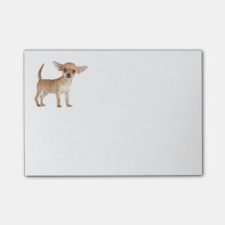 Love Chihuahua Puppy Dog Post IT Sticky Notes