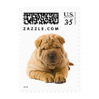 Love Chinese Shar Pei Puppy Dog Postage Stamps